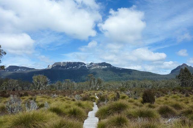 button grass plain and mount olympus tasmania