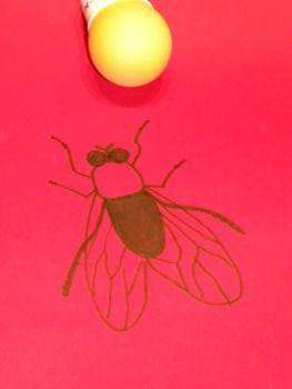 La mosca! #sortirambnens