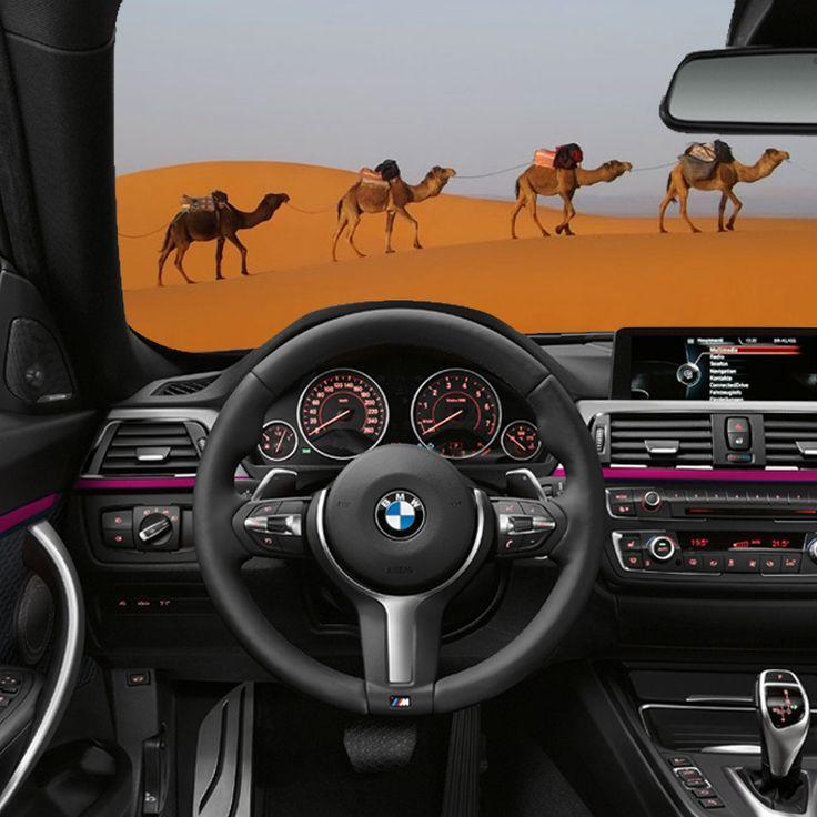 Cambia scenario. Un'escursione nel Deserto del Sahara a dorso di un cammello o a bordo di un #autounica!