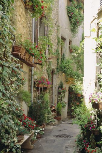 Mougins, Cote d'Azur, Provence, France.     I want the side of my future house to have greenage growing :)