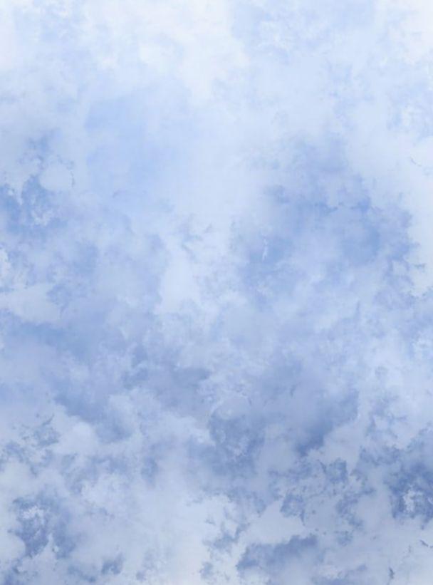 Wallpaper Blue Pastel Simple Animal Dark Iphone In 2020