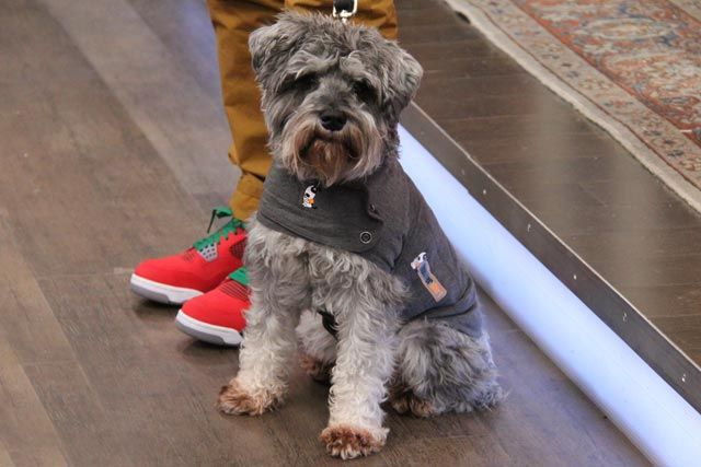 Stan the man in the Thundershirt from the Pet's Gift Guide