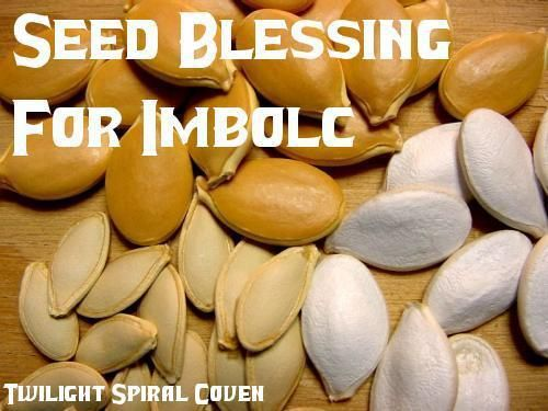 IMBOLC THEME: Seed Blessing    There are many themes that work well with Imbolc. One is the blessing of seeds. Many of us have our own vegetable or herb gardens. Magickal Moonie's Sanctuary shared Twilight Spiral Coven's photo.  This is a fantastic idea and great share from Twilight Spiral Coven! ♥