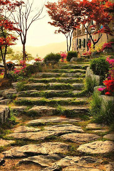Stone Pathway, Bomunho Lake, South KoreaGardens Stones, Stones Step, Southkorea, Stone Pathways, Stones Pathways, Stones Paths, Bomunho Lakes, Gardens Pathways, South Korea