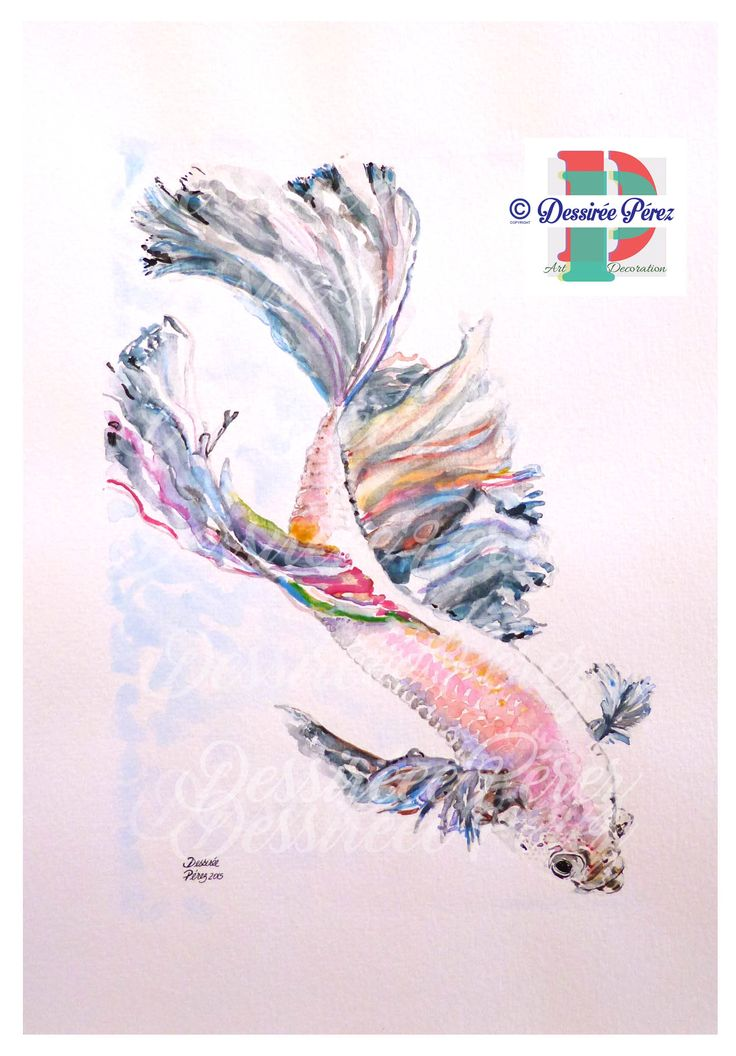 #bettafish #bettasplendens #pezbetta #Pesce combattente #WatercolorPainting  #acquerello #Art #Print #WallArt #Homedecor A3 Dessirée Pérez copyrights