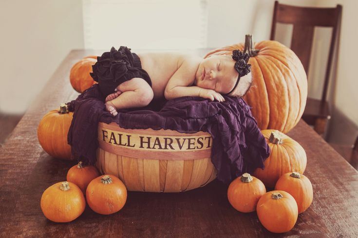 Fall harvest pumpkin newborn pics by Twinty Photography, www.twintyphotography.com/blog