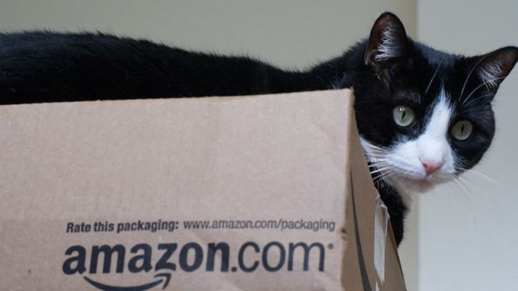 Amazon's prices are notoriously low, but they're not always the lowest. As…