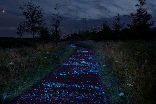 Olanda. Il Paese delle biciclette. Una pista ciclabile illuminata a tema. La dedica è a Vincent Van Gogh