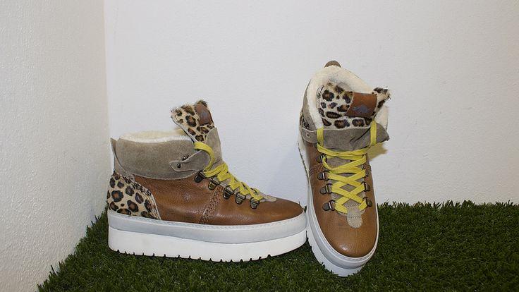 IMG_7524 Sneakers Soya Fish