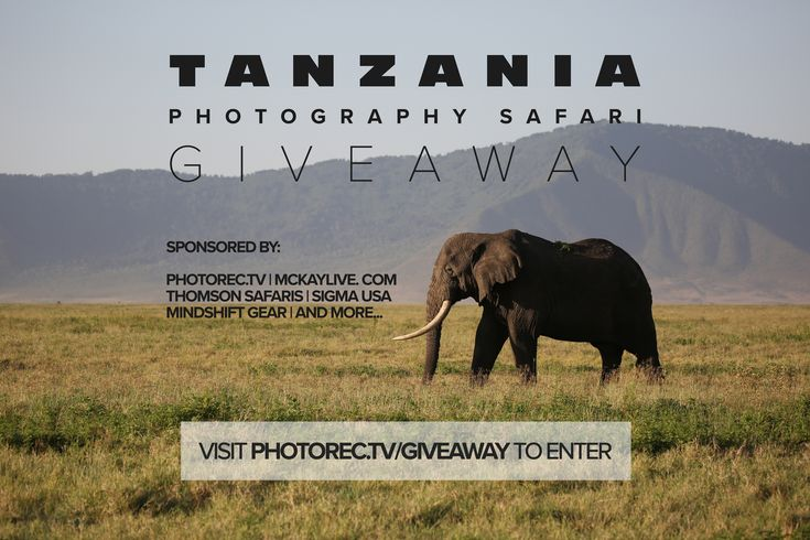 Win an African Safari with Thomson Safaris, McKay Photography Academy and Photorec.tv