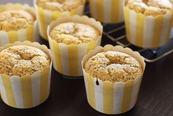 Paleo Lemon Poppy Seed Muffins   Paleo Newbie