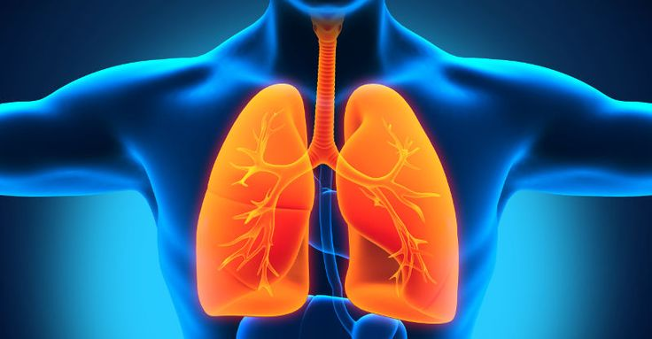 20 Natural Ways to Get Rid of Pneumonia (No. 5 is More Effective Than Most Antibiotic Treatment)  Read more: http://dailyhealthpost.com/natural-cures-for-pneumonia/#ixzz3Qd4IX7S3 Follow us: @dailyhealthpost on Twitter   dailyhealthpost on Facebook