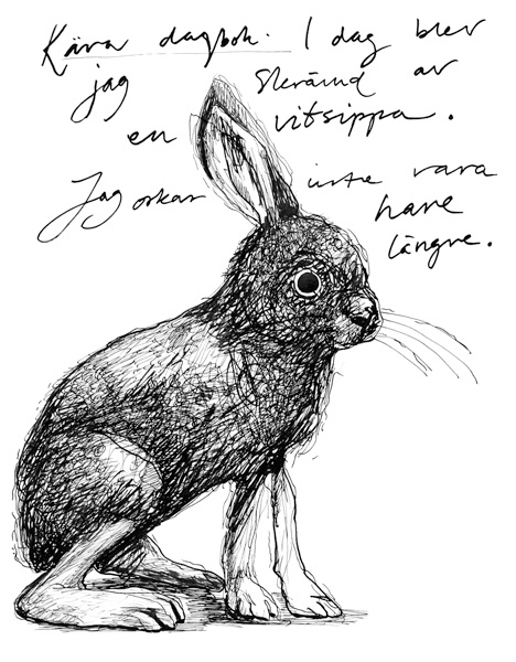 """Dear diary. Today I was frightened by an anemone. I can't stand beeing a hare anymore."" 