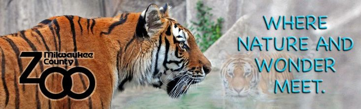 Here in Wisconsin it is easy to see a deer, raccoon or squirrel. But what about lions, tigers or bears? Oh my! Enjoy Zoo Lover's Day at one of our state's amazing parks! #ShorewestRealtors #ZooLoversDay #ShorewestFamily