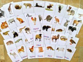 """Наконец-то закончила """"производство"""" карточек с животными. Их оказалось довольно много, аж 60 штук. Карточки как всегда выложила для скачива..."""