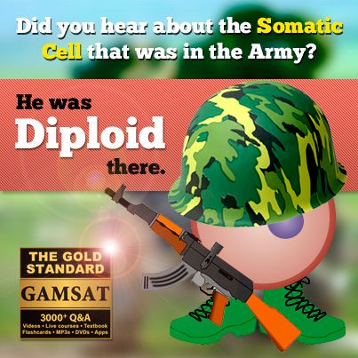 Did you hear about the somatic cell that was in the Army? He was diploid there.