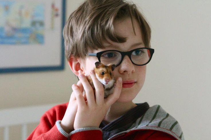 """REZENSION """"RETTET RAFFI"""" Goldhamster Raffi ist der beste Freund des 8-jährigen Sammy. Und das nicht nur, weil das kleine Tier Tore schießen und Sachen finden kann. Nach einer schweren Operation wird das Auto mit dem Käfig geklaut und Sammy muss sich auf eine ..."""