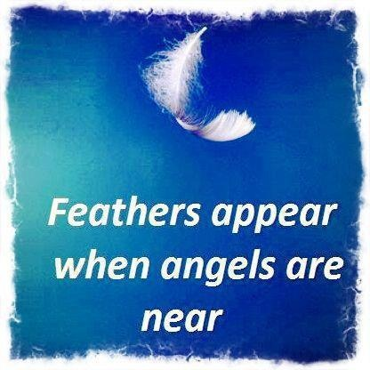 Feathers appear when angels are near. | ANGELS | Pinterest ...