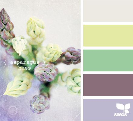 asparagus hues....Use the grey as the neutral for all rooms and then different accent colors