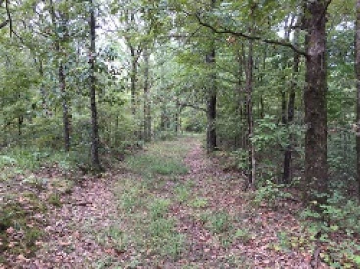 17835 hunting recreational land in cherry valley