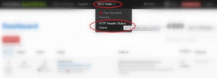 How to use our HTTP Status Code tool