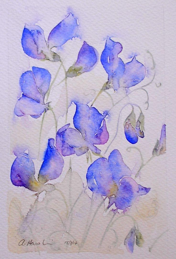 SOLD!  'BLUE SWEET PEAS' watercolour painting by Amanda Hawkins
