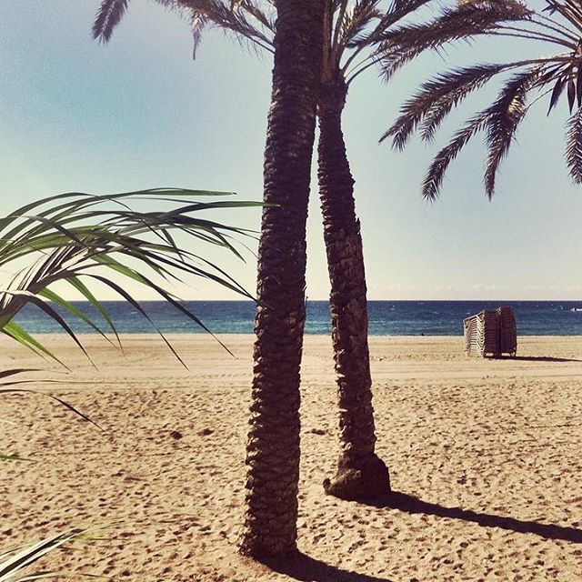 Just another manic monday! #barcelona