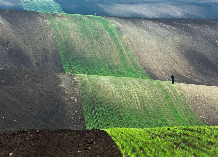 Image source: Przemyslaw Kruk