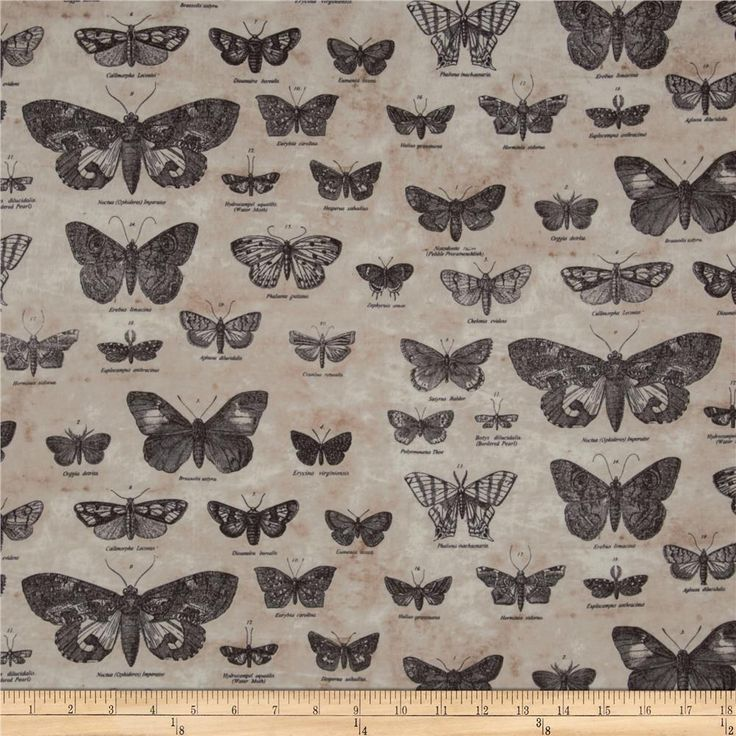 Tim Holtz Eclectic Elements Butterflight Taupe from @fabricdotcom  Designed by Tim Holtz, this cotton print fabric is perfect for quilting, apparel, crafts, and home decor items. Colors include brown and cream on beige.