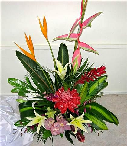 Fl Arrangments From Roses To Tropical Flower Arrangement Cairns Free Delivery