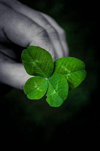 Lucky 3+1   #black #white #grey #green