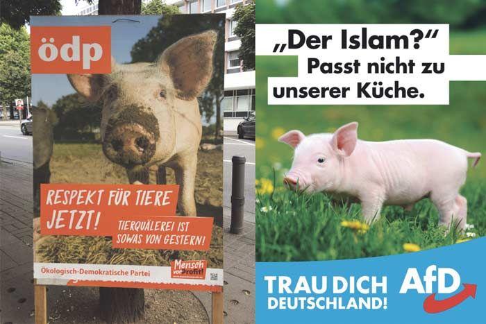 Wahlplakate 2017 im Design-Check