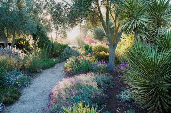 Criss Canning's garden adjacent to her husband's nursery - Lambley Nursery - in Ascot, Victoria
