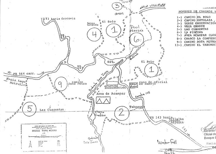 Bosque Estatal de Toro Negro State Forest - with trail map!