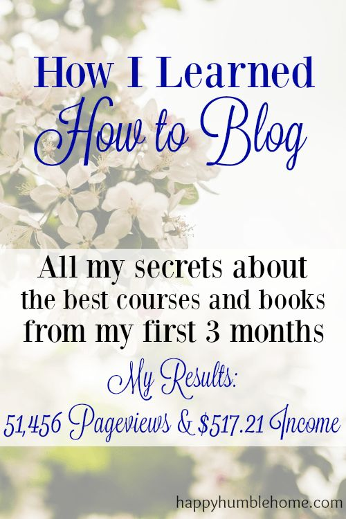 How I learned how to Blog during my first 3 Months Blogging- 51,456 Pageviews and $517.21 Income - You can do it too!