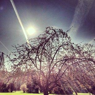 chrees's Instacanv.as Gallery - Buy chrees's Instagram Art