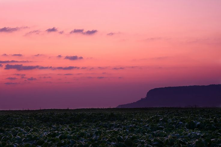 Milton sunrise ...