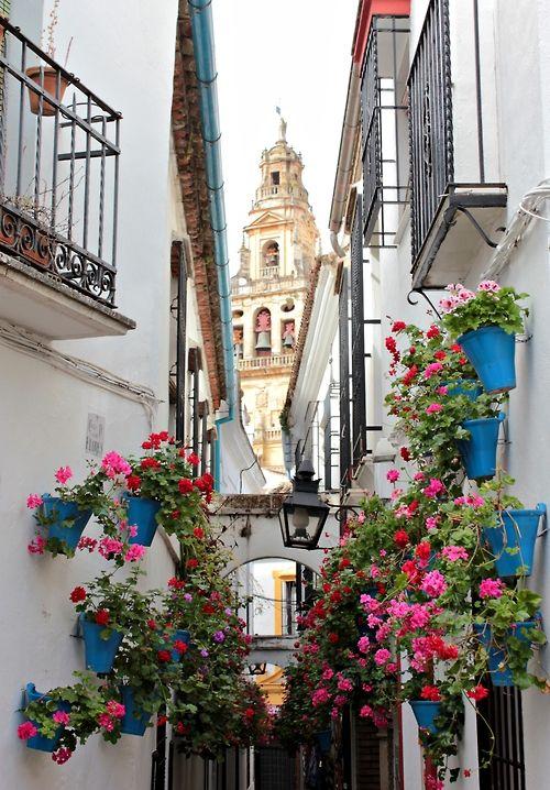 Calleja de las Flores, Córdoba   Spain