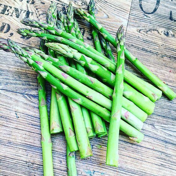 Green Asparagus Connovers Colossal Heirloom