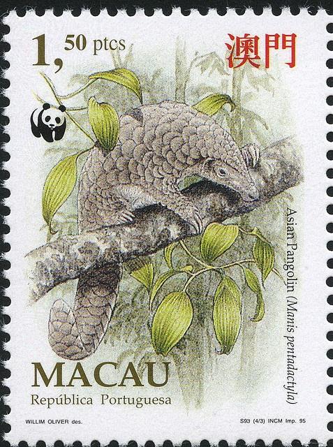 Armadillo postage stamp from Macau