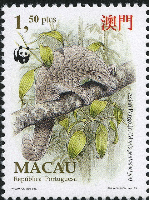 Armadillo postage stamp from Macau