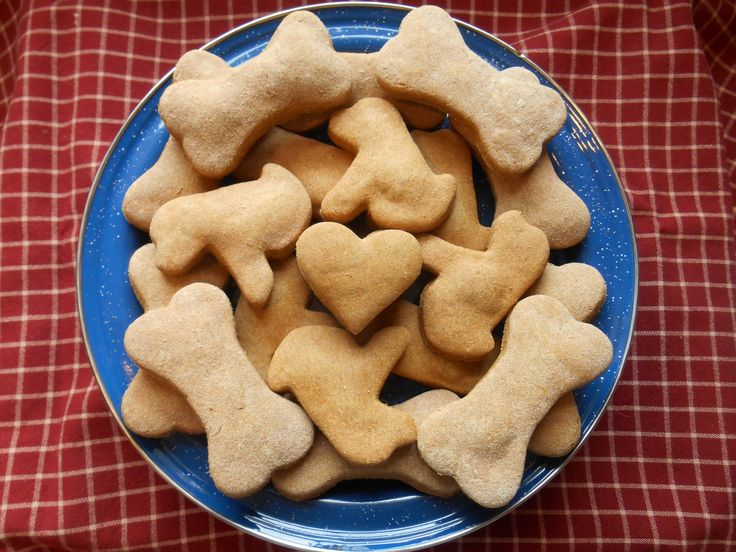 how to make dog treats out of dry dog food