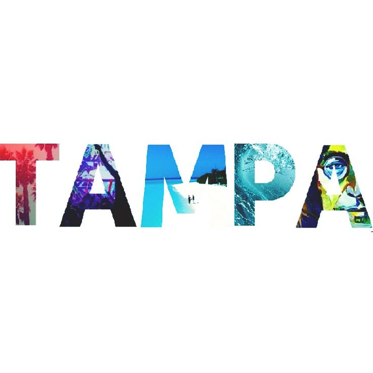 17 best images about tampa bay on pinterest girl scouts