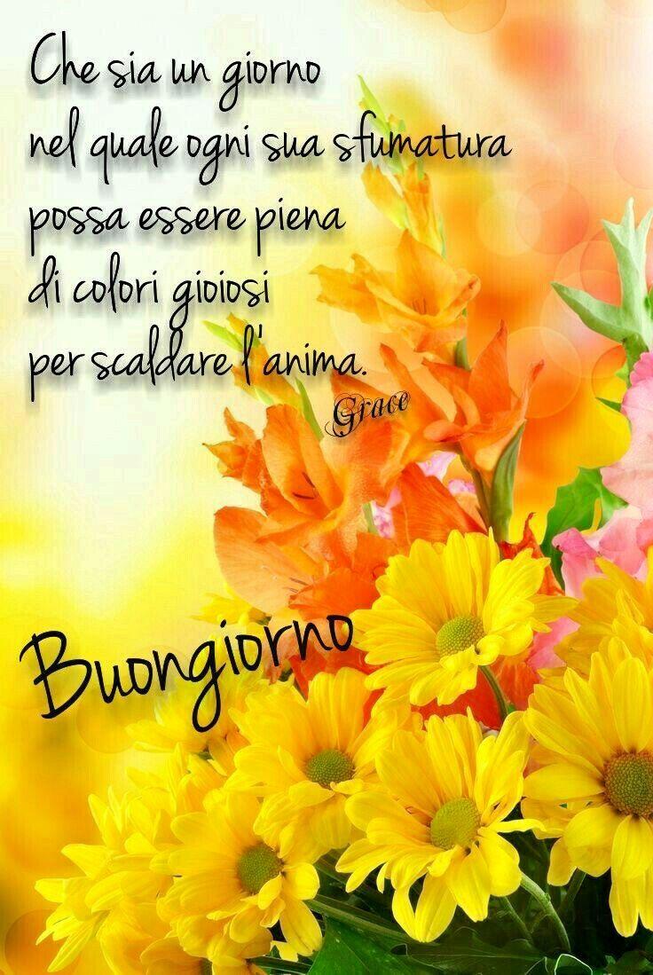 1208 best buongiorno amici images on pinterest bonjour for Top immagini buongiorno