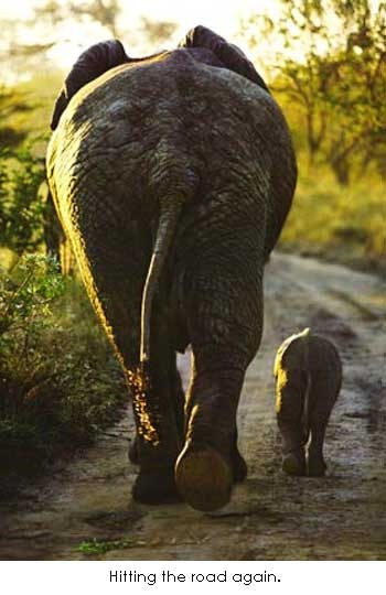 mother and baby....love!
