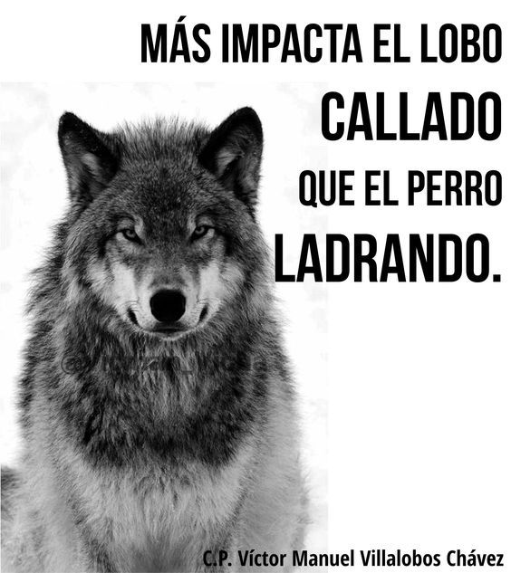 Más impacta el lobo callado que el perro ladrando.