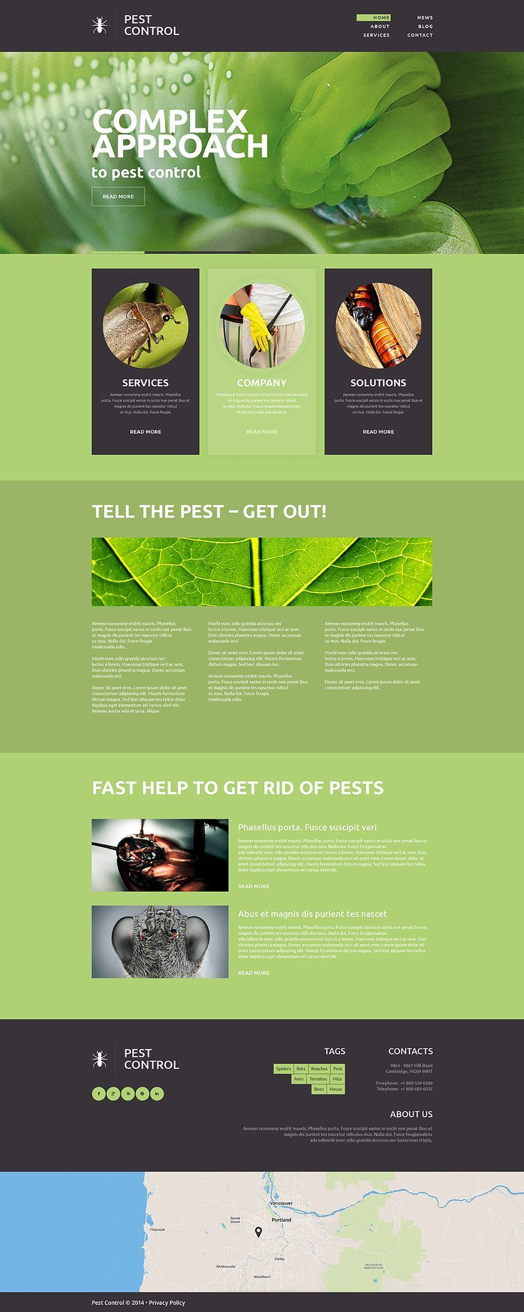 Pest Control Flyer Control Flyer Flyer Zur Schadlingsbekampfung Depliant Sur La Lutte Antiparasit In 2020 Web Layout Design Unique Web Design Creative Web Design