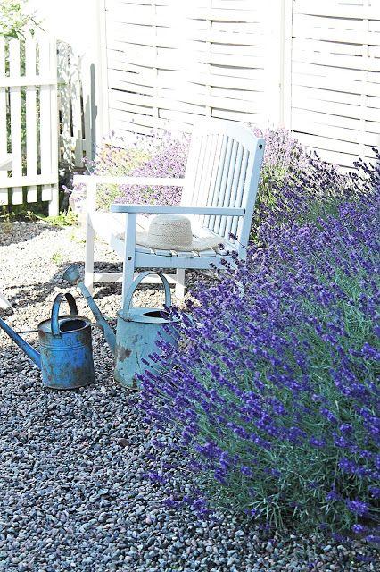 VIBEKE DESIGN: Lavender inspiration