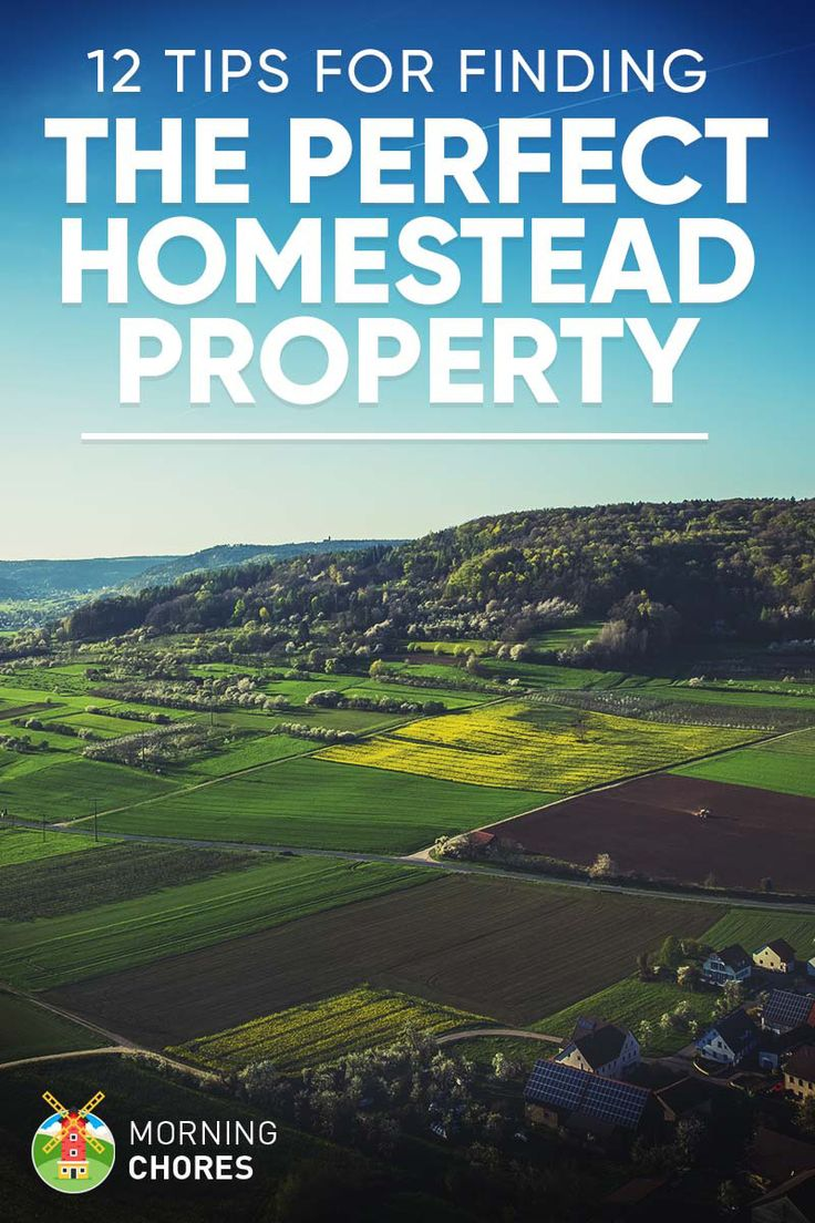 12 Tips for Finding the Ideal Homestead Land and Property