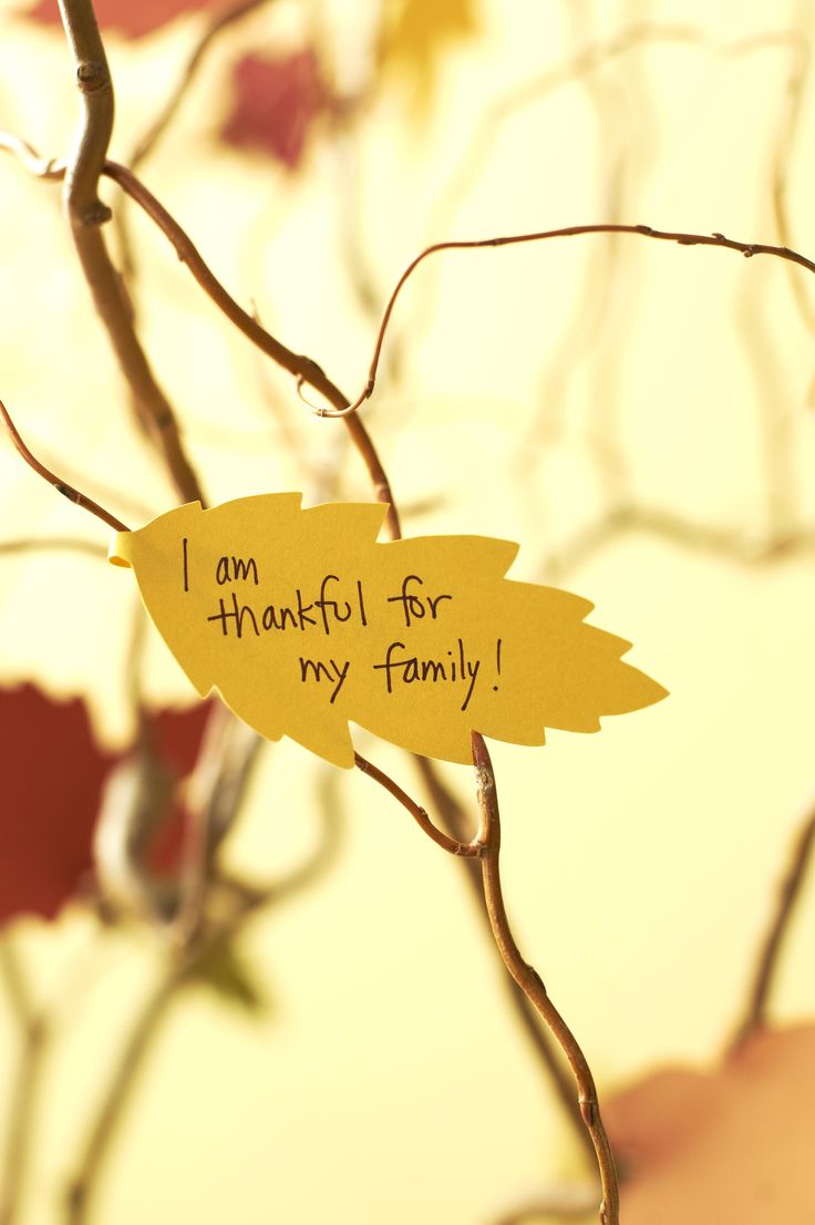 Thankful tree. Leaves by http://www.etsy.com/shop/ccartsy
